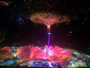 Cirque Du Soleil- Urban Spa